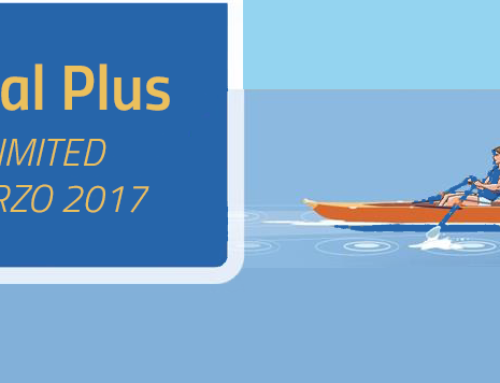 Dual Plus Limited Marzo 2017